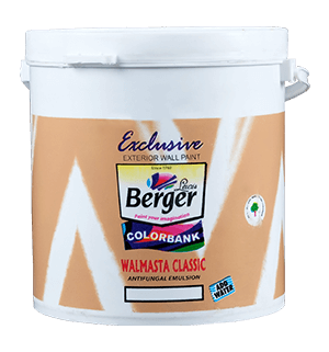 Berger Walmasta - Best External Wall Paint